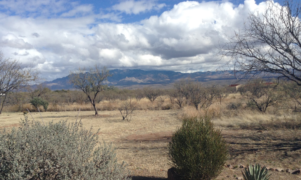 view from Tubac  towards Santa Rita mountains